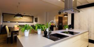 Urban apartment - white kitchen counter with plants ** Note: Slight graininess, best at smaller sizes